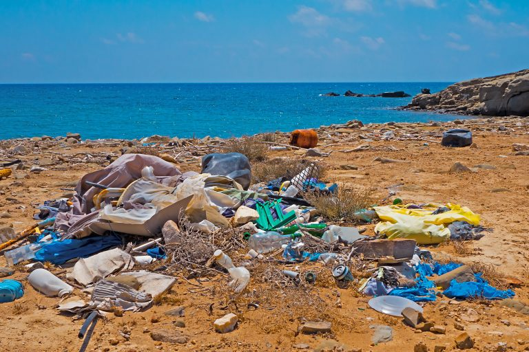 Warning: cheap eco-friendly products can cause more damage than you think
